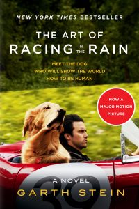 Art of Racing in the Rain Movie Version