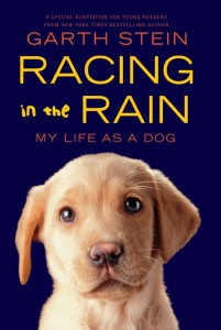 Racing in the Rain - My Life as a Dog 436 x 648 pixels (272k)