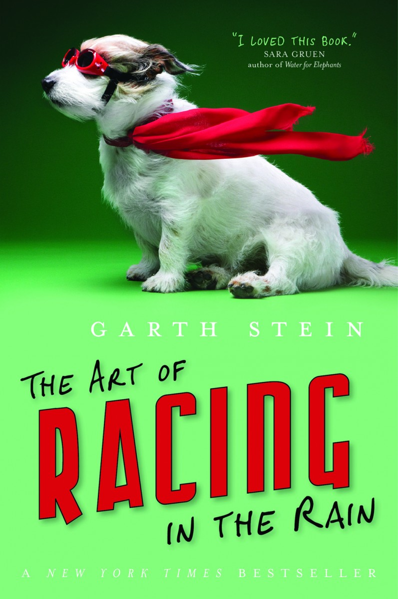 The Art of Racing in the Rain (Audiobook) by Garth Stein